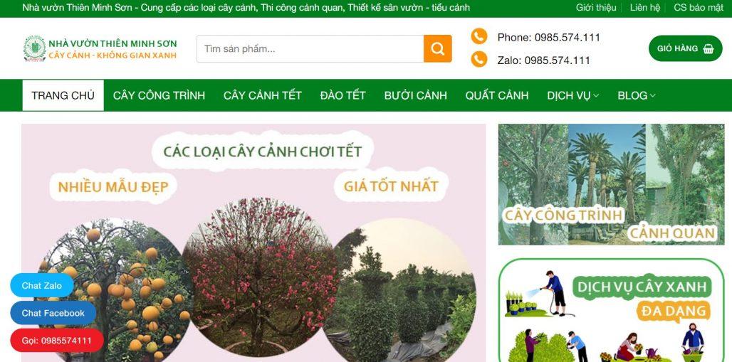 Công ty cho thuê đào chơi Tết Thiên Minh Sơn