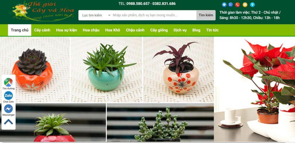 công ty cho thuê cây đào chơi Tết Thế giới cây và hoa